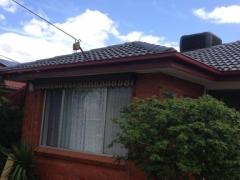 clean roofing tiles in melbourne.jpg