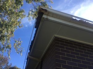 Guttering Replacement with Colorbond Guttering