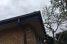 Watsonia new gutters and facia
